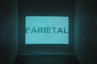 Articulation (detail) (2011)