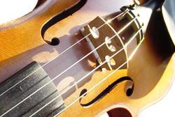 Poster viool kopie