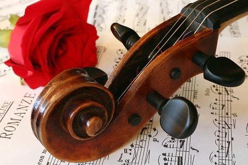 Musical Serenade Dinner Experience