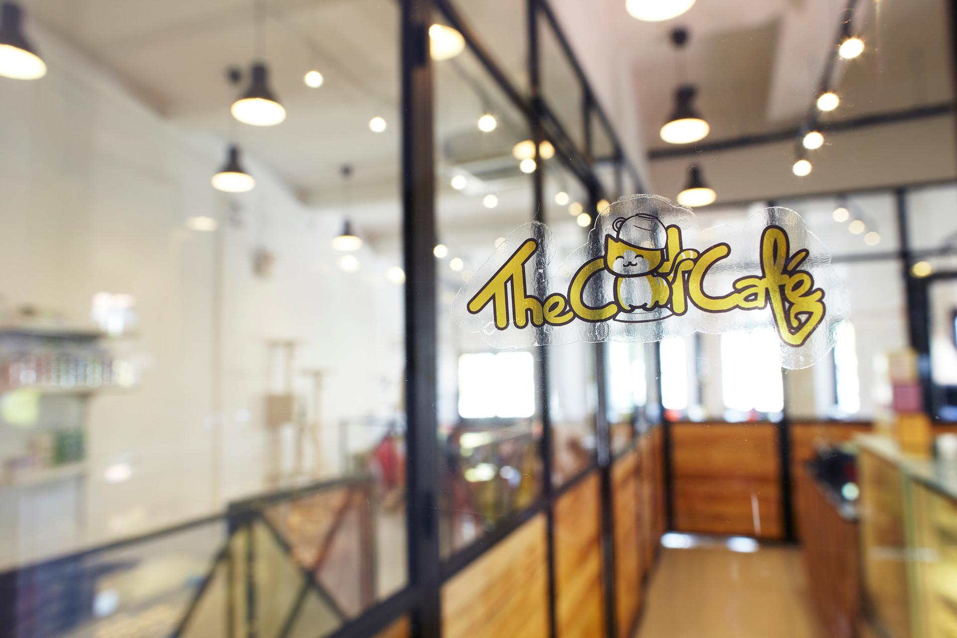 cat cafe 013.jpg