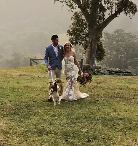 Pet wedding attendant gold coast.JPG