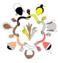 deaf-women-of-color2014.jpg