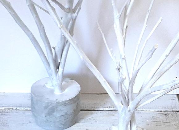 עץ שתול בבטון - התאמה אישית