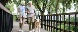 Walking after knee replacement