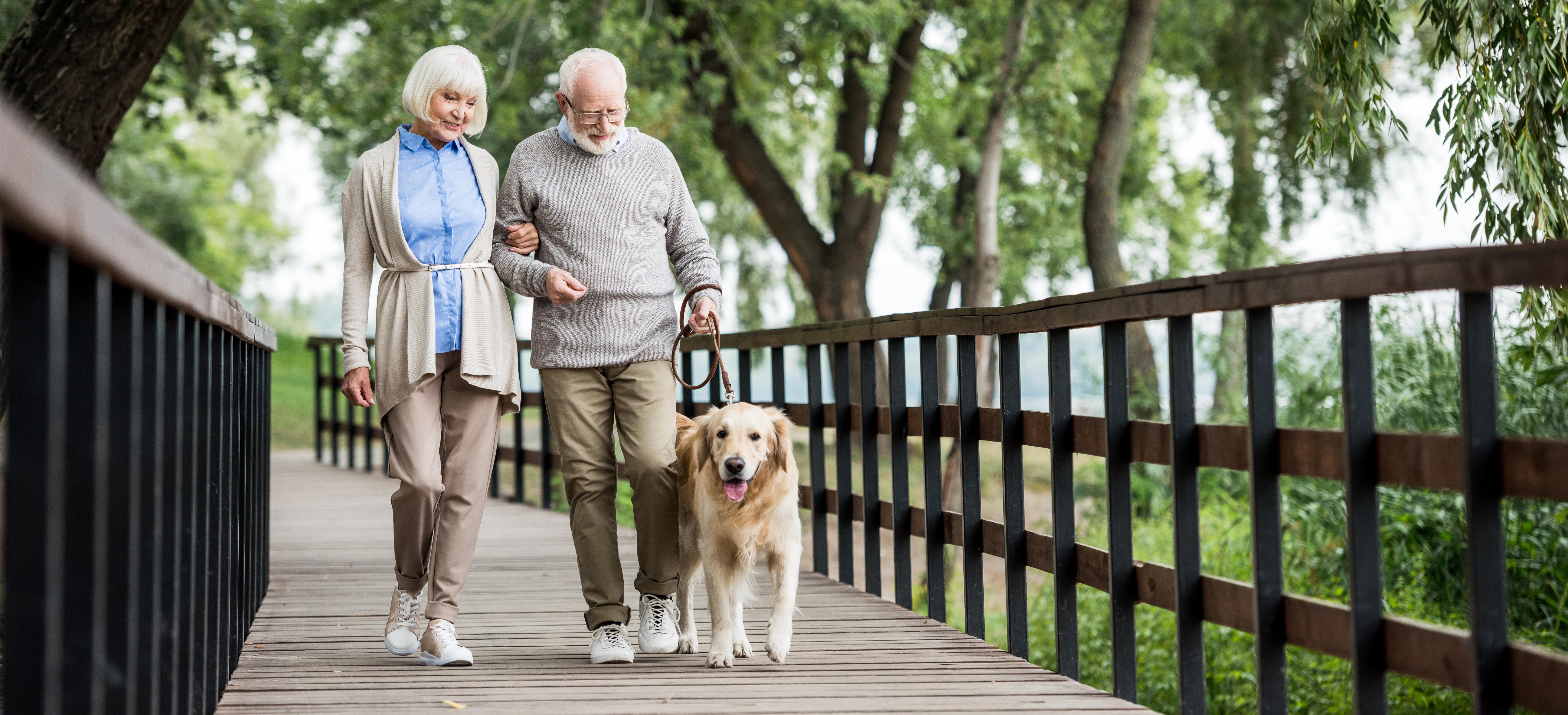Senior couple walking dog.jpg