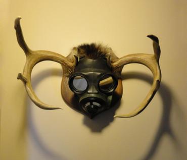 Hunting Dissent (Toro)