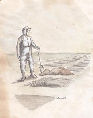 COVID-19 Grave Digger (study 2)