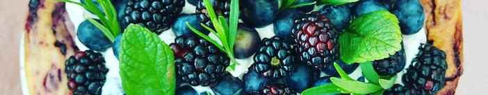 New York Style Blueberry Cheesecake