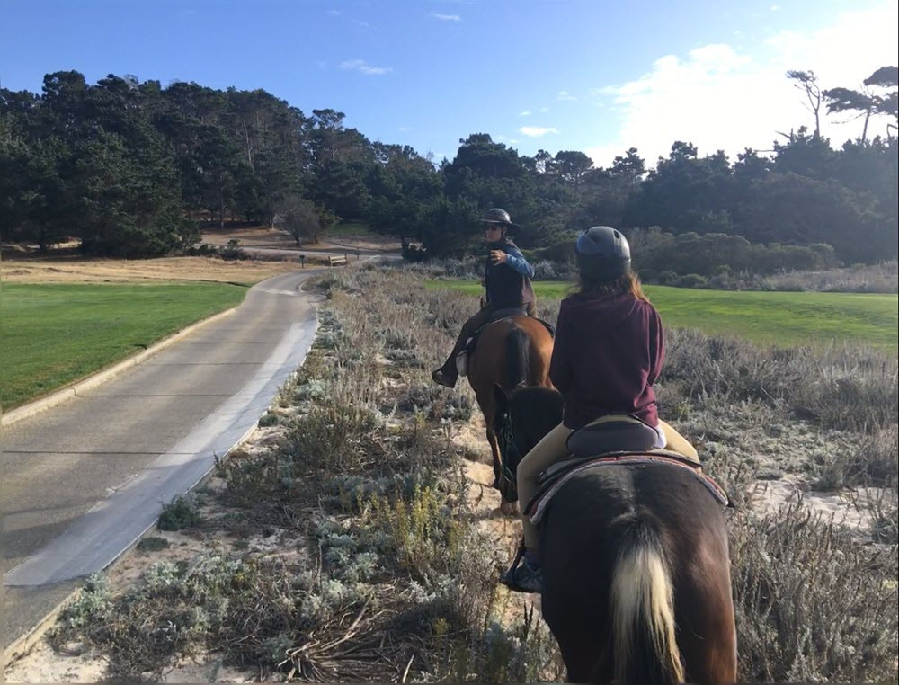Horse Trail Ride along golf courses in Pebble Beach from #JewelboxCottages