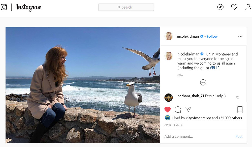 Nicole Kidman Instagram shot on beach with seagull, close to #JewelboxCottages