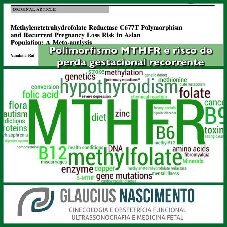 mthfr3