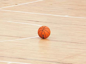 Lady Shamrocks top Webberville to advance to District Finals