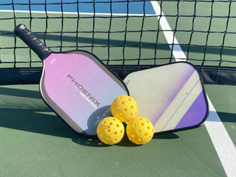 WELCOME HOME SNOWBIRDS—MISSING PICKLEBALL?