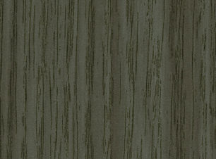 Gray Acacia.jpg