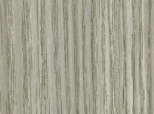 White Acacia.jpg