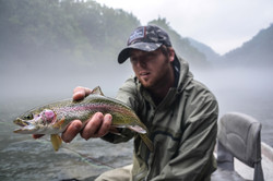 Pretty little Rainbow on a foggy AM