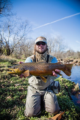 Banner Elk Fishing