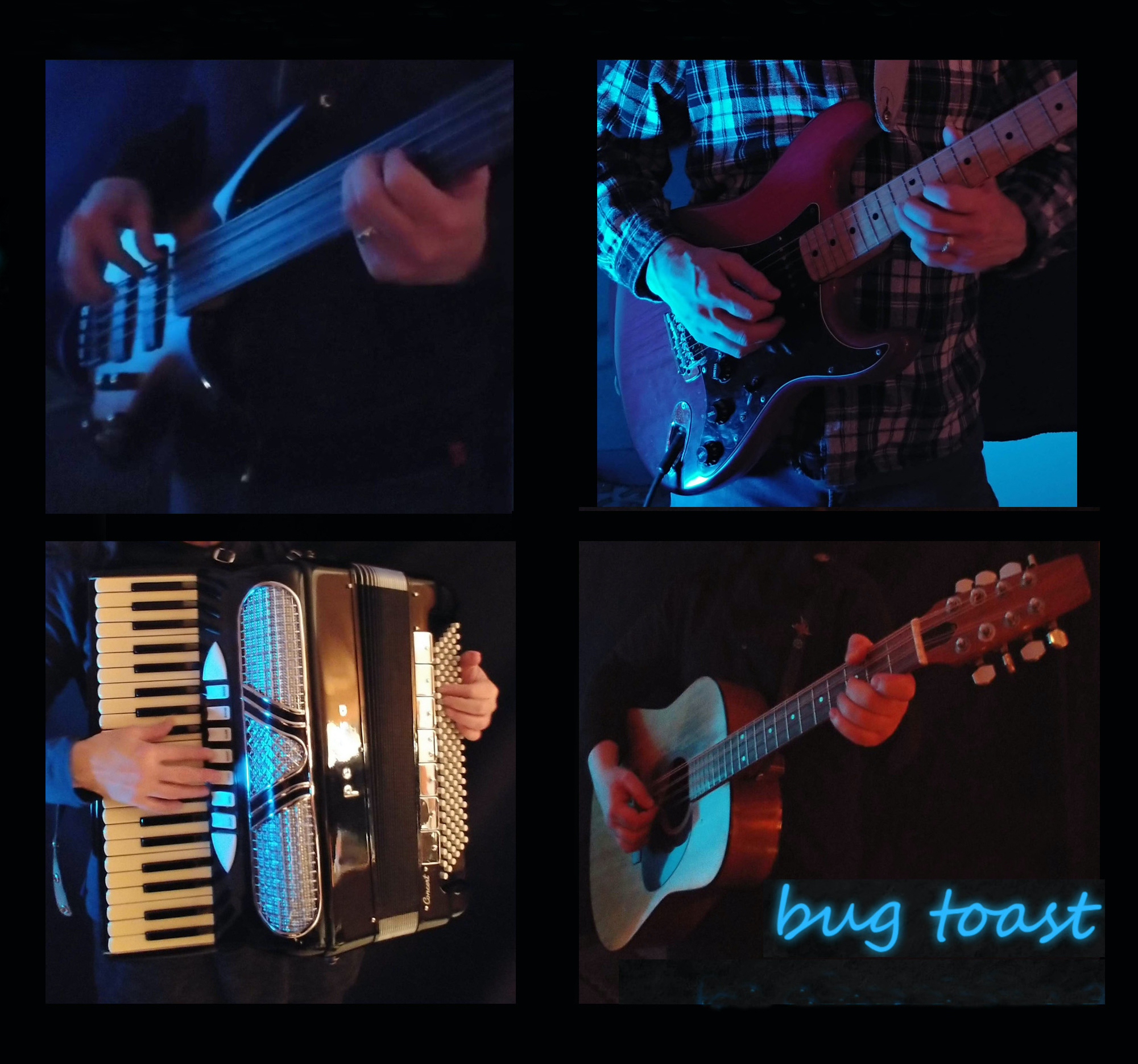 Bug Toast (progressive folk ensemble)