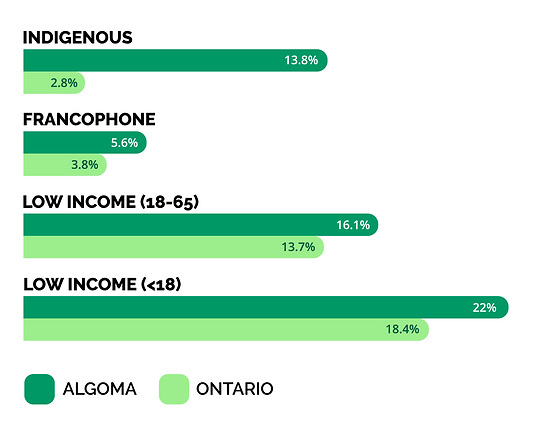 Social determinants of health in Algoma