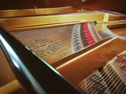 Piano Interior