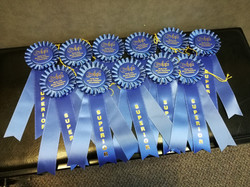 Constance Murray Festival Ribbons