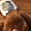 Thumbnail: Foster Monkeys need A Home