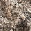 Thumbnail: Lavendar Epsom salt