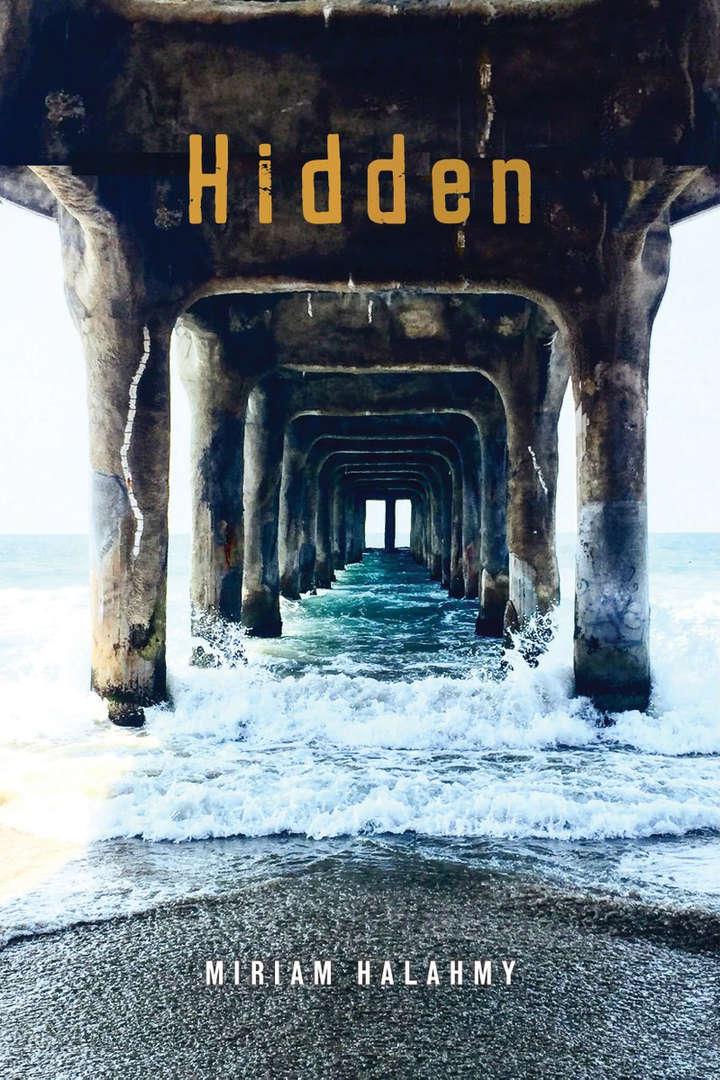 Hidden US cover.jpg