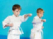 two-boys-make-karate-exercises-1.jpg