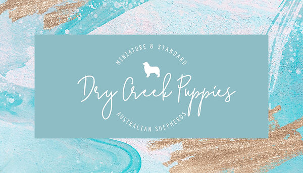 Dry Creek Puppies - Business Card.jpg