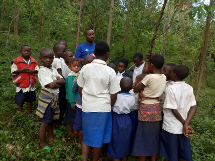 Pupils' participation in tree planting is essential