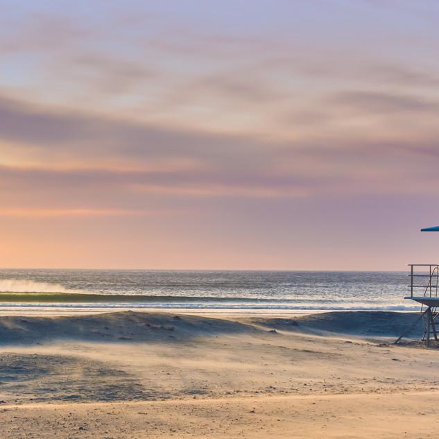 Dog Beach.jpg