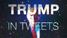 Trump in Tweets