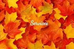 bigstock-Fall-leaves-14340998_edited.jpg