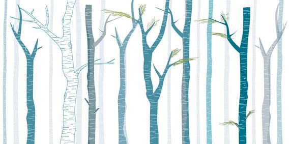 30- יער טבעי 1.