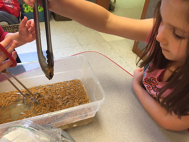 Keep our water clean! | Bee Balm Learning Center