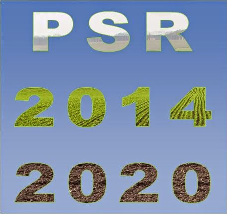 5_PSR
