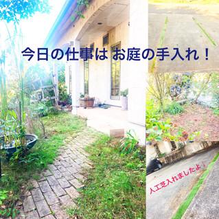 今日はお庭