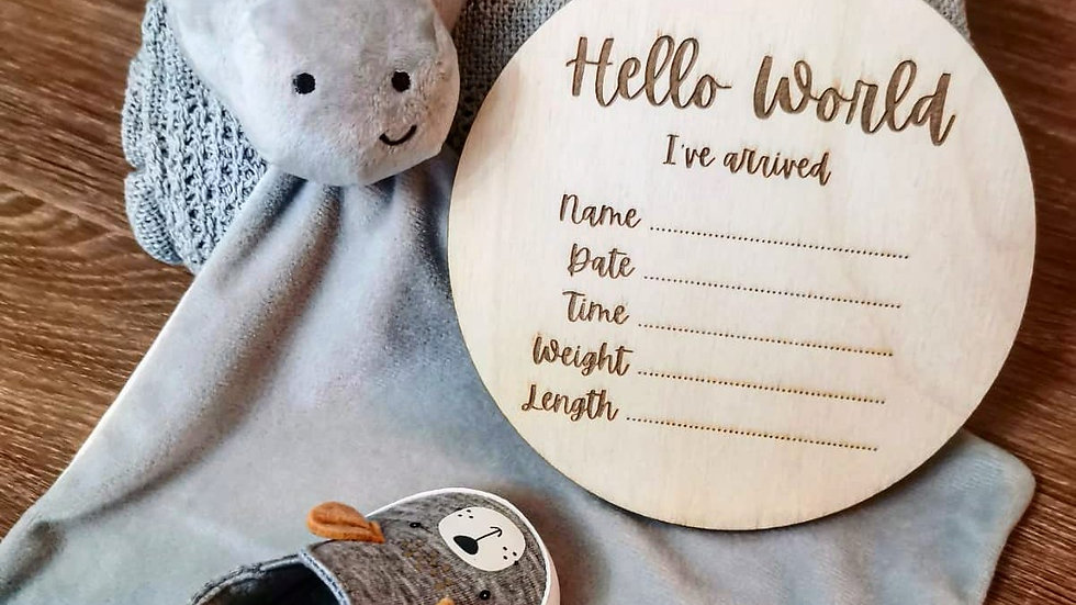 Hello World...I've arrived New Baby Plaque