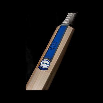 hawk bat.jpg