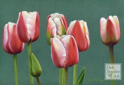 Tulips- Giclee Print