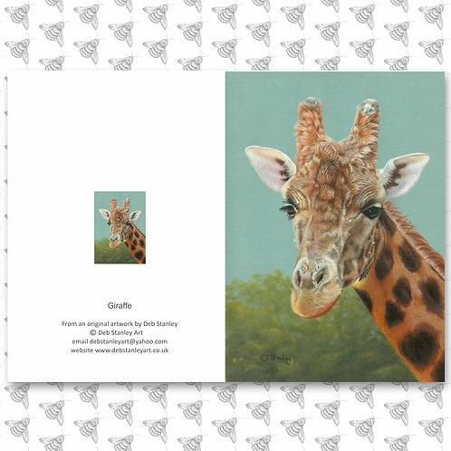 Giraffe - Greeting Card