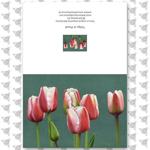 Tulips - Greeting Card