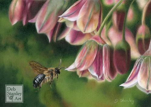 Honey Garlic- Giclee Print