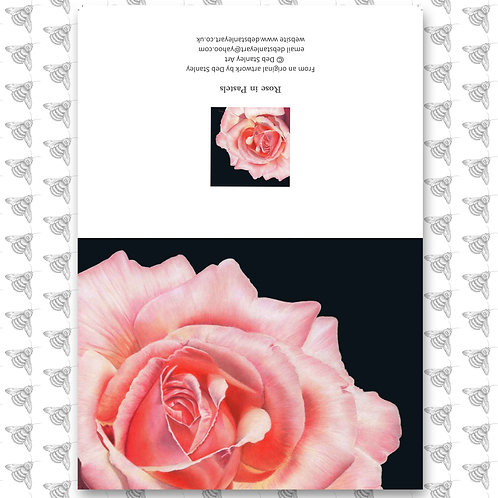 Rose in Pastels - Greeting Card