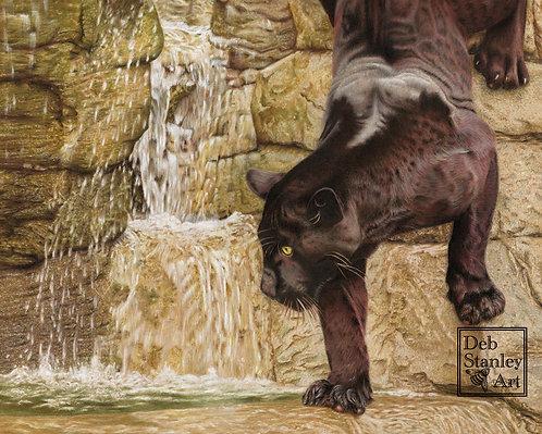 Maya and the Waterfall- Giclee Print