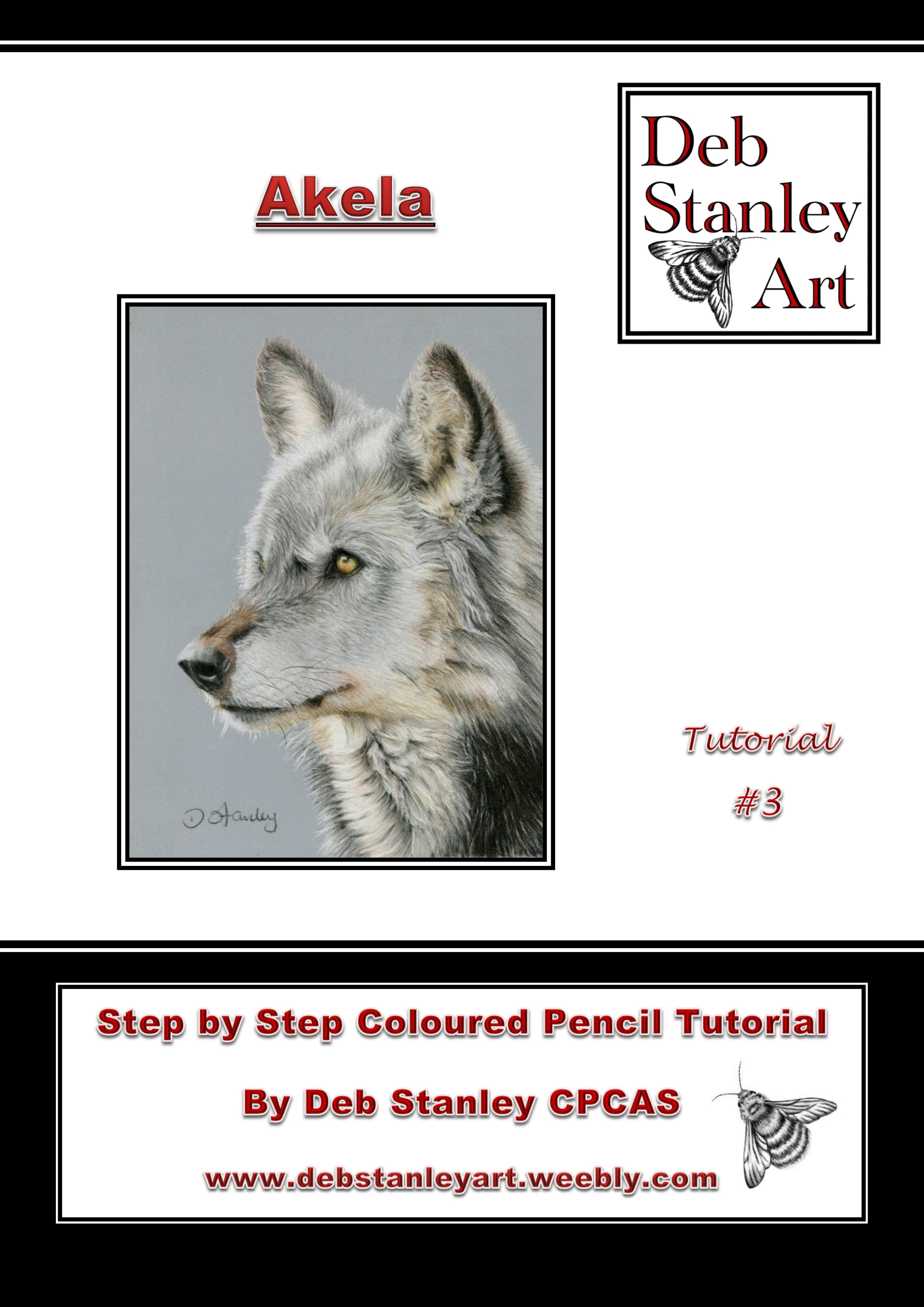 Akela Tutorial #3