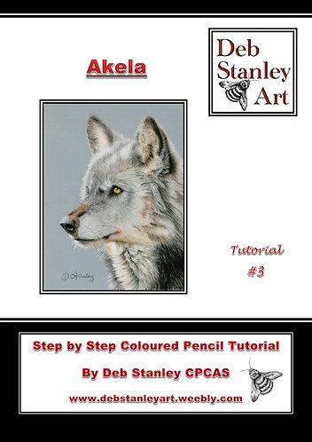 Akela Coloured Pencil Tutorial Booklet