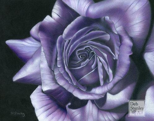 Vertigo Rose- Giclee Print