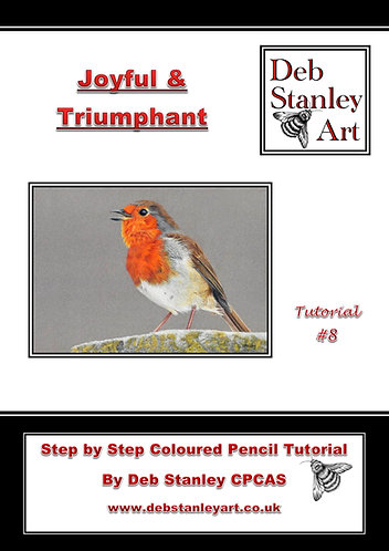 Joyful & Triumphant Coloured Pencil Tutorial Booklet